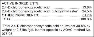 Example of ingredients statement on a pesticide product label.